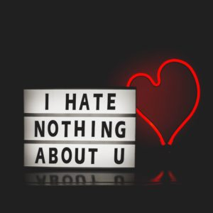 """Red heart with a sign that says, """"I hate nothing about you."""""""
